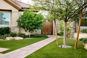 Trees, Plants, and Turf